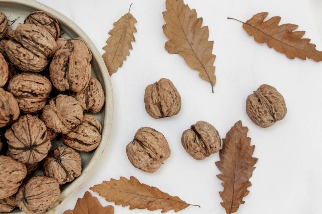 walnuts superfood orchard uttarakhand